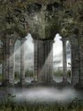 与藤的有雾的废墟 免版税库存照片