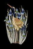 与虹膜花的苍鹭起重机刺绣 被绣的传染媒介时尚 免版税库存照片