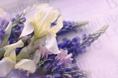 与虹膜花花束的五颜六色的构成  背景细部图花卉向量 库存图片