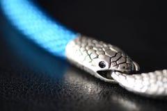 与蛇头锁的蓝色串珠的项链在黑暗的背景 库存照片