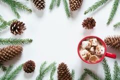 与蛋白软糖和圣诞树分支杉木锥体的圣诞节热巧克力在白色 与拷贝空间的顶视图 免版税库存图片