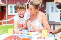 与蛋糕的家庭在夏天庭院里 免版税库存图片