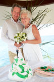 与蛋糕的资深海滩婚礼仪式在前景 免版税图库摄影