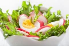 与蛋萝卜和绿色叶子的健康沙拉 库存照片