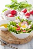 与蛋萝卜和绿色叶子的健康沙拉 免版税图库摄影