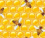 与蜂和蜂窝的无缝的样式 蜂蜜 有用的昆虫 向量 免版税库存图片