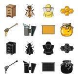 与蜂窝的一个框架,一个杓子蜂蜜,从蜂的一fumigator,一个瓶子蜂蜜 在黑色的蜂房集合汇集象 免版税库存图片