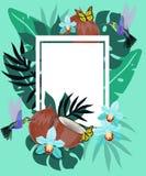 与蜂鸟、椰子、蝴蝶和蓝色的兰花的夏天背景 与飞行小的蜂鸟的花卉框架近 库存例证