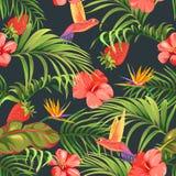 与蜂鸟和棕榈叶的无缝的热带样式 向量例证