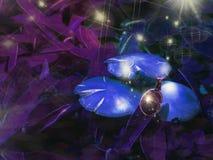 与蜗牛的蘑菇在晚上 免版税库存图片