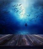 与蜘蛛和万圣夜背景的木地板 库存图片