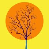 与蜘蛛的树 免版税库存图片