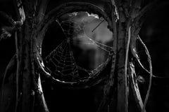 与蜘蛛网的老监狱篱芭细节 库存图片