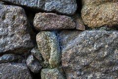 与蜘蛛网的自然石头 背景 图库摄影