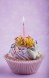 与蜡烛的生日杯形蛋糕,在桃红色 免版税库存照片