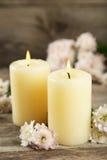 与蜡烛的美丽的白色菊花在木背景 库存照片