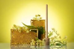 与蜡蜂窝、纺锤和菩提树花的木制框架在黄色背景 免版税库存照片
