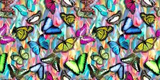 与蝴蝶的无缝的抽象五颜六色的背景 向量例证