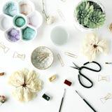 与蝶形领结夹子,剪刀,干燥郁金香,玫瑰,调色板的平的位置构成,多汁在白色背景 库存图片