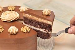 与螺母的巧克力蛋糕 免版税库存图片
