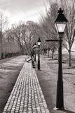与街灯的维多利亚女王时代的街道再生产 免版税库存图片