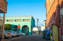 与街道画的五颜六色的大厦和在威尼斯的棕榈树靠岸,洛杉矶,加利福尼亚 免版税库存图片