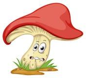 与表面的一个蘑菇 库存例证