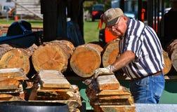 与被切开成尺寸木材的日志的室外锯木厂 库存照片
