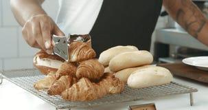 与被刺字的胳膊的黑混合的族种barista供食新月形面包和咖啡给有智能手机的一个俏丽的女孩 库存图片