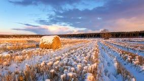 与被剪的草、一个干草堆和第一雪的农村领域在俄罗斯,乌拉尔 图库摄影