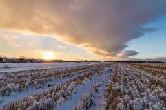 与被剪的草的农村领域和第一雪在俄罗斯,乌拉尔 库存图片