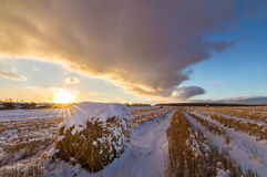 与被剪的草的农村领域和第一雪在俄罗斯,乌拉尔 免版税库存图片
