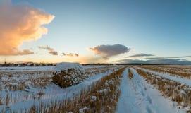 与被剪的草的农村领域和第一雪在俄罗斯,乌拉尔 库存照片