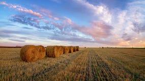 与被剪的草的秋天全景农村领域在日落 免版税库存照片