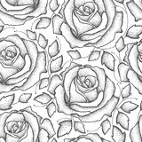 与被加点的玫瑰色花和叶子的传染媒介无缝的样式在白色背景的黑色 与开放玫瑰的花卉背景 向量例证