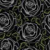 与被加点的白玫瑰和绿色的无缝的样式在黑色离开 向量例证