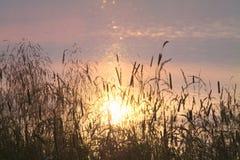 与被反射的日落的湖表面 库存图片