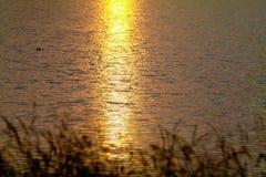 与被反射的日落的湖表面 免版税图库摄影
