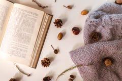 与被弄脏的文本、编织工作、石南花、锥体、橡子和栗子的开放书在轻的背景 库存照片