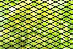 与被弄脏的绿色背景的黑暗的铁栅格 库存图片