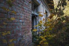 与被打击的窗口和黄色叶子的被放弃的大厦 免版税库存图片