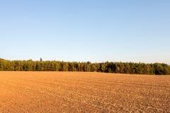 与被收获的领域、森林和蓝天的秋天风景 免版税库存图片