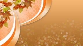 与被染黄的叶子的明亮的秋季背景,秋天来了 免版税库存图片