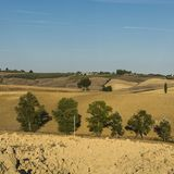 与被犁的领域的农村风景 免版税图库摄影