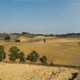 与被犁的领域的农村风景 库存照片