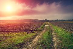 与被犁的领域的农村风景 图库摄影