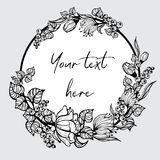 与被绘的花的圆的框架 库存图片