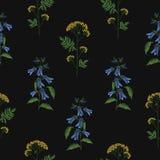 与被绣的开花的风铃草和艾菊的典雅的无缝的样式在黑背景开花 背景与 库存例证
