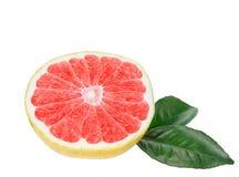 与被隔绝的叶子的半,成熟,有机葡萄柚。 库存图片