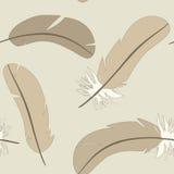 与被隔绝的羽毛的无缝的样式在轻的背景 免版税图库摄影